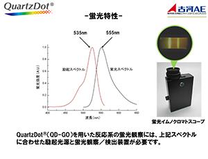 Quartz Dot/蛍光特性